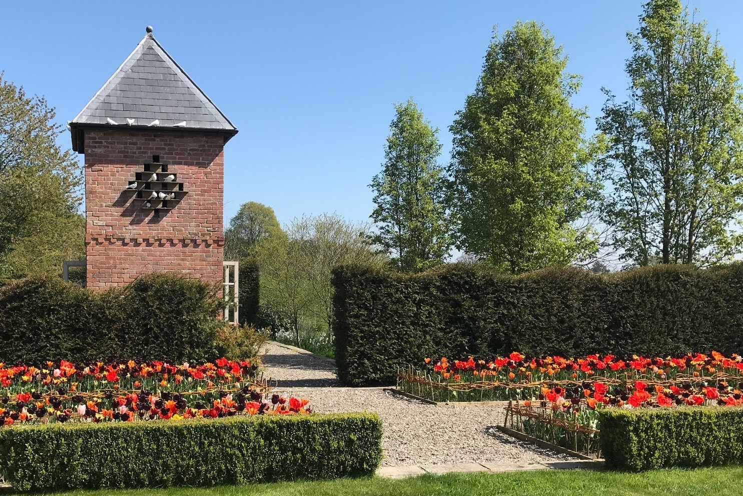 Tulips-and-dovecote-2